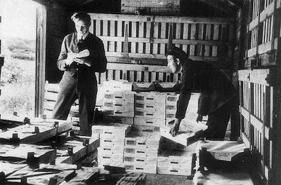 Historical photo of pallets of strawberries being loaded onto a train